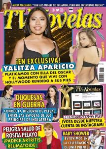 Revistero Virtual Tv Y Novelas Mexico Edicion 4106