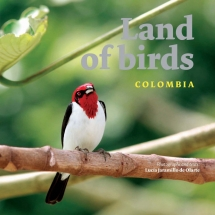 LAND OF THE BIRDS COLOMBIA